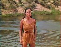 Western Movies - L'Attaque de Fort Douglas (Mohawk) 1956 - Documents et Affiches