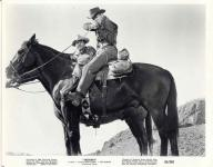 Western Movies - 5000 dollars mort ou vif / Cinq mille dollars mort ou vif (Taggart) 1964 - Documents et Affiches