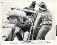 Western Movies - Furie sur le Nouveau Mexique (Young fury) 1964 - Documents et Affiches