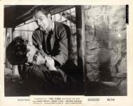 Western Movies - Le Tueur au visage d'ange / Le Tueur qui murmure / Le Démon de l'Ouest (The Fiend who walked the West) 1958 - Documents et Affiches