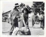 Western Movies - A l'assaut de Fort Clark (War Arrow) 1953 - Documents et Affiches