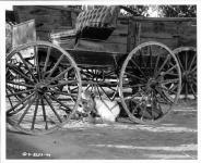 Western Movies - Masterson of Kansas 1954 - Documents et Affiches