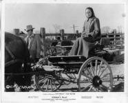Western Movies - Le Salaire de la violence (Gunman's walk) 1958 - Documents et Affiches