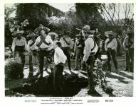 Western Movies - Les Aventures de Villa / Les Aventures de Pancho Villa (Villa ! !) 1958 - Documents et Affiches
