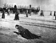 Western Movies - Convoi de femmes (Westward the Women) 1951 - Documents et Affiches