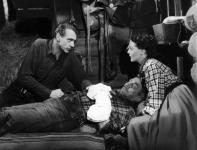 Western Movies - Le Grand Bill (Along Came Jones) 1945 - Documents et Affiches