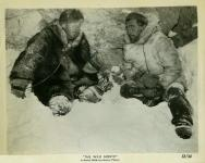 Western Movies - Au pays de la peur (The Wild North / The Big North) 1952 - Documents et Affiches