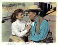 Western Movies - Le Mustang Noir (Red Canyon) 1949 - Documents et Affiches