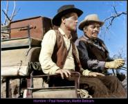 Western Movies - Hombre (Hombre) 1966 - Documents et Affiches