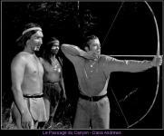 Western Movies - Le Passage du Canyon (Canyon Passage) 1946 - Documents et Affiches
